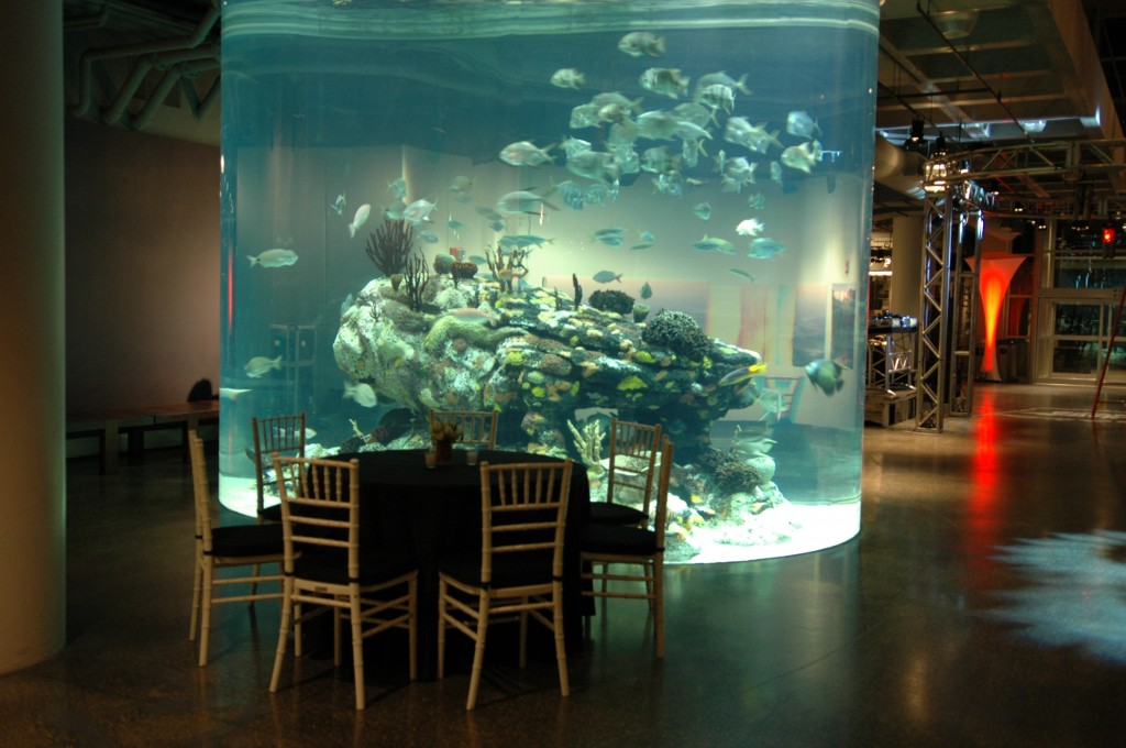 Foxhollow Sc Aquarium 002 Destination Management